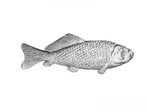Dresdner Pappe silber Fisch für Menükarten