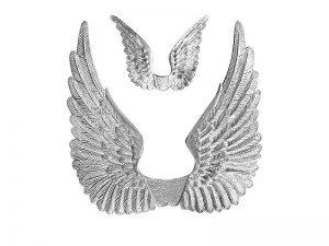 Geprägte Flügel im Set für Dekorationen