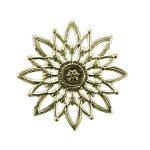 Sternrosette gold